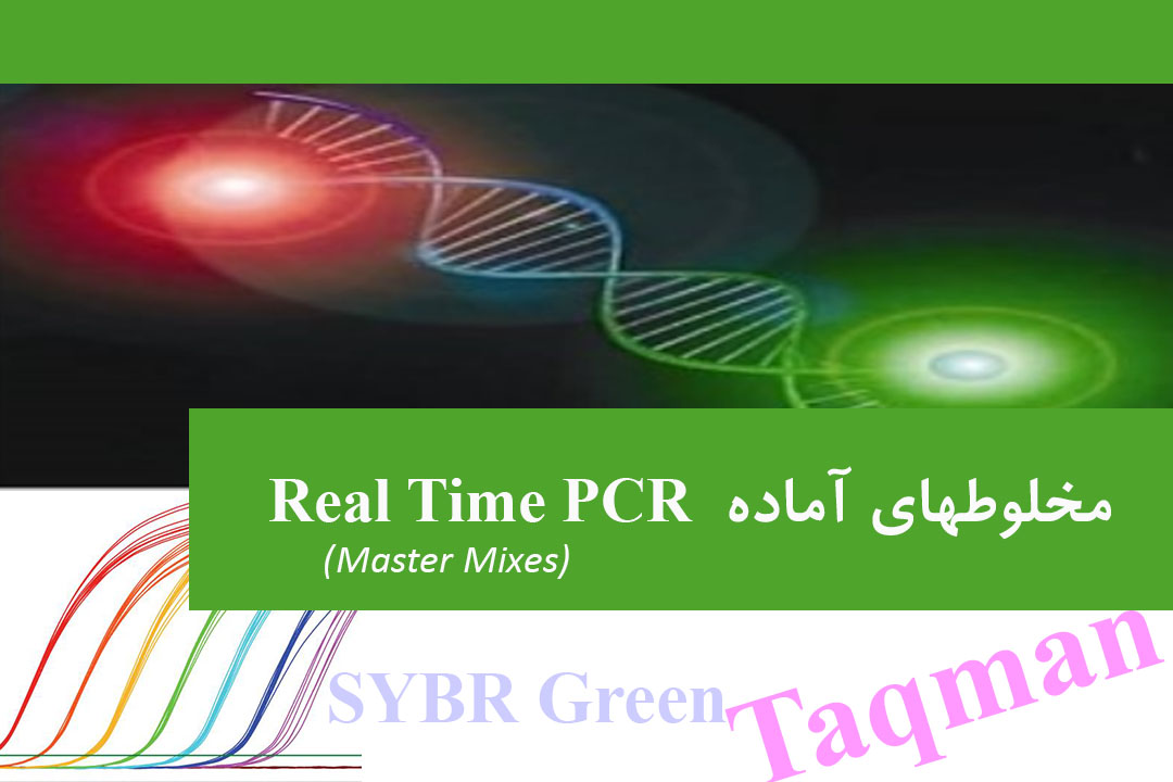 Real Time PCR Mastermixes